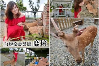 屏東恆春景點|台版奈良公園『鹿境 梅花鹿生態園區』與可愛小鹿零距離接觸(免費停車場)