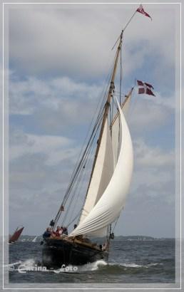 Viking - Zollkreuzer