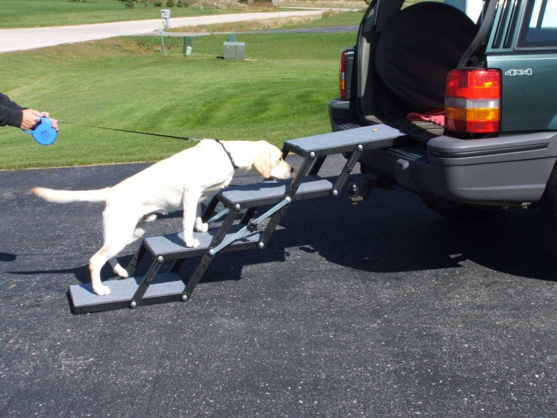 pitbull carpet mill equipment vidalondon