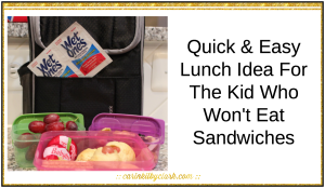Quick and Easy Lunch Idea for The Kid Who Won't Eat Sandwiches via @carinkilbyclark