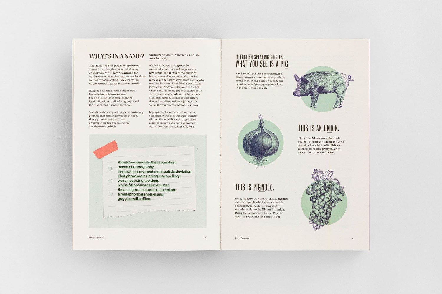 Pignolo Cultivating the Invisible, wine art book, design and artwork by Carin Marzaro