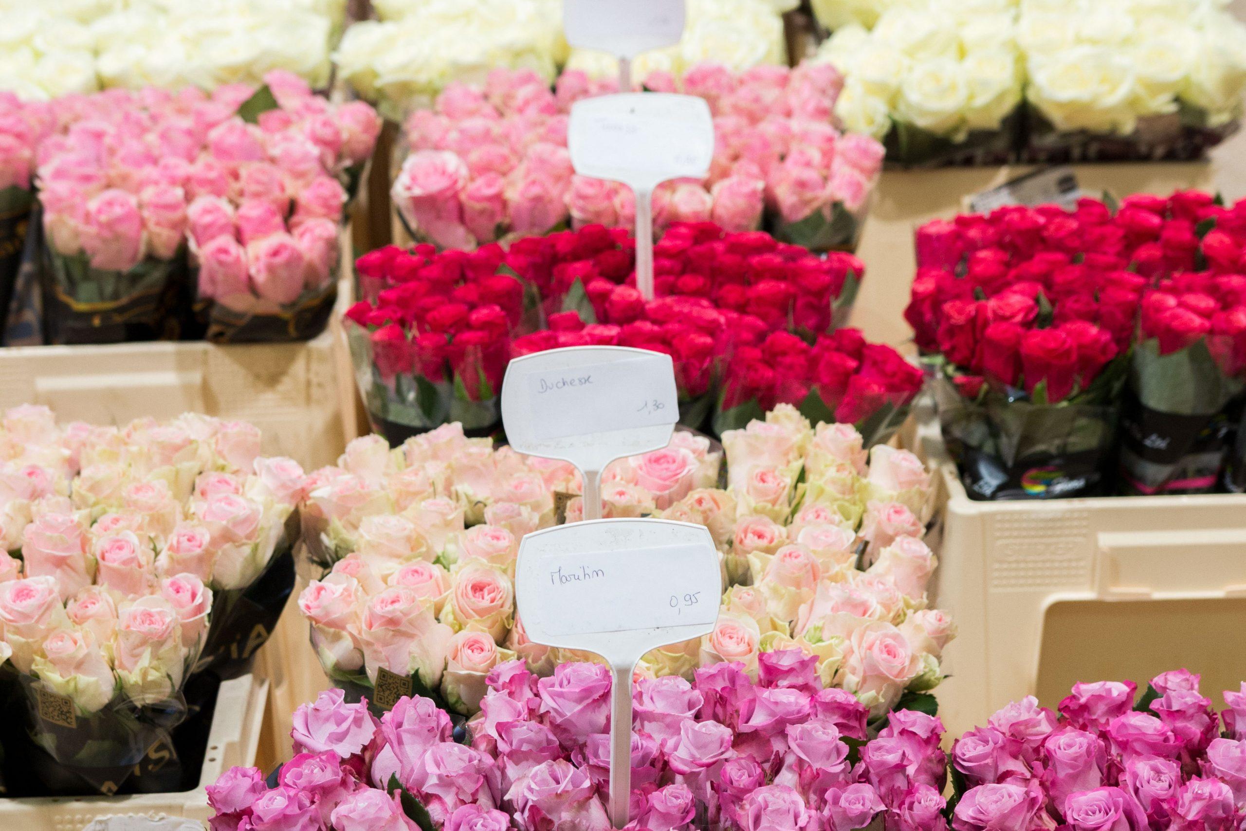 Paris_FlowerMarket22
