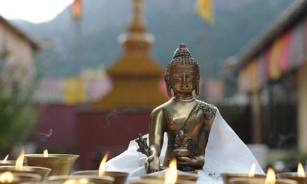 Budismo para cariocas