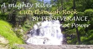motivation, perseverance