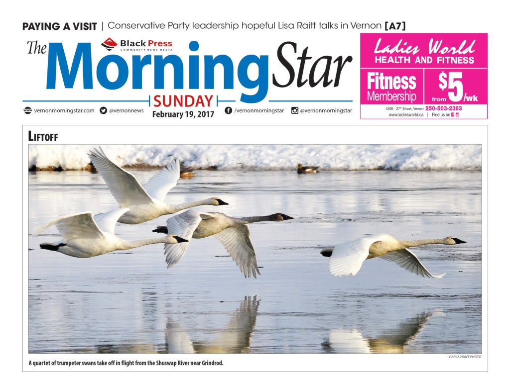 February 19, 2017 Front Cover