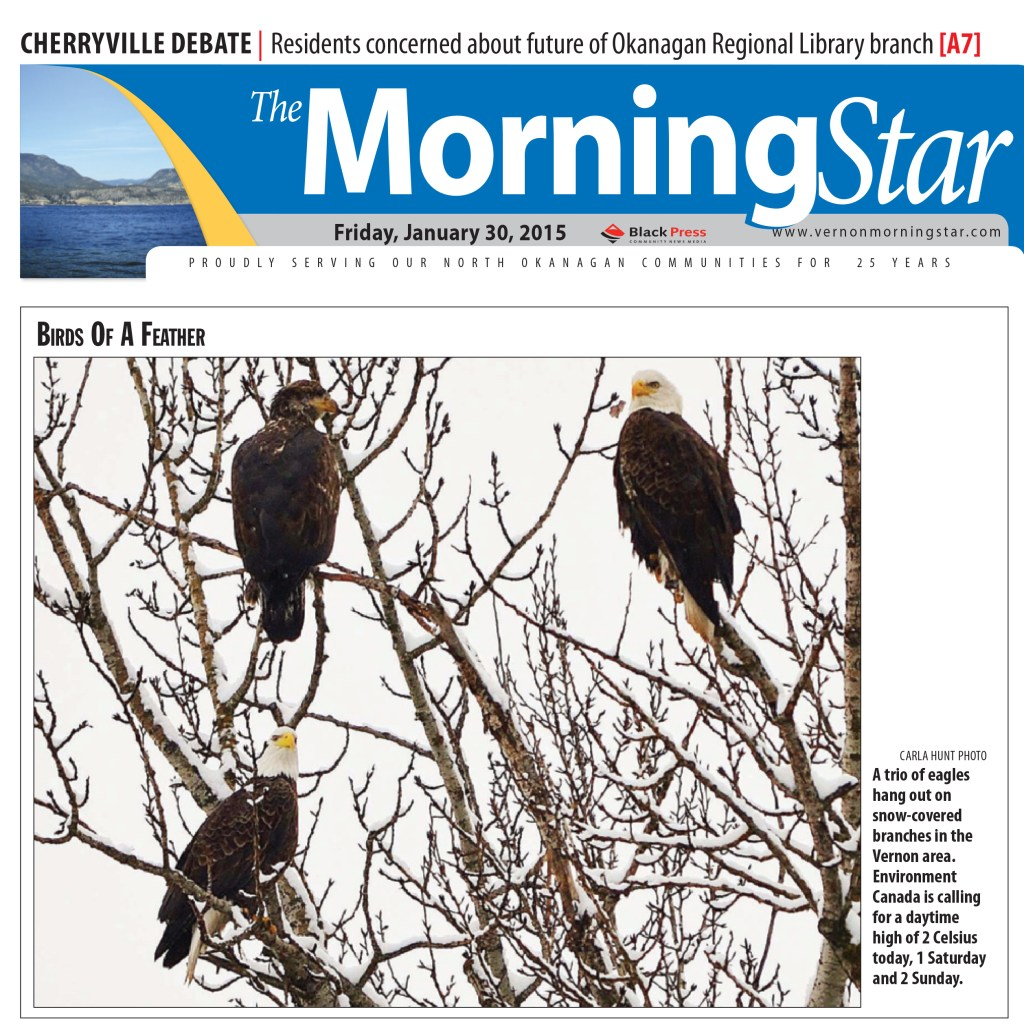 January 30, 2015 Front Cover