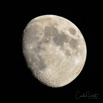 The moon over my house, Vernon, BC