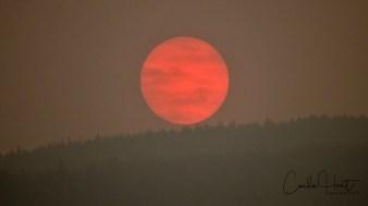 Wildfire Sunset 2018, Vernon, BC