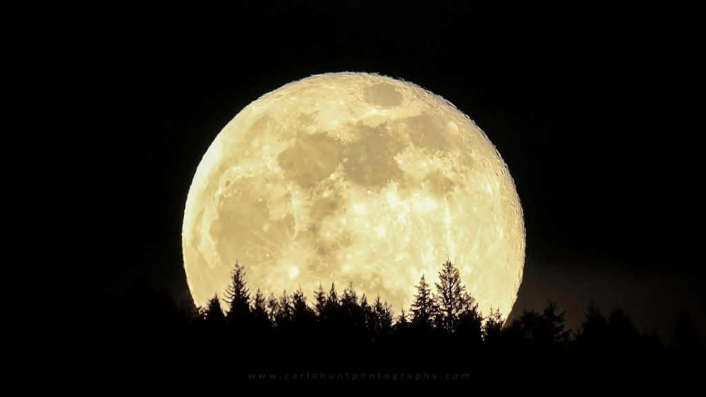 January 21, 2019 Full Moon, Vernon, BC
