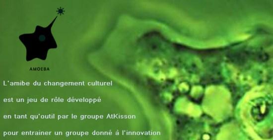 L'amibe du changement culturel est un jeu de rôle développé en tant qu'outil par le groupe AtKisson pour entrainer un groupe donné à l'innovation