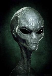 Le terme Petit-Gris désigne une espèce hypothétique d'extraterrestres humanoïdes qui sont à l'œuvre dans les cas d'enlèvements par les extraterrestres relatives aux oeuvres de science fiction contemporaines.