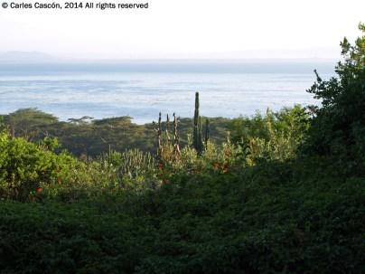 Vista del lago Naivasha desde el Top Camp