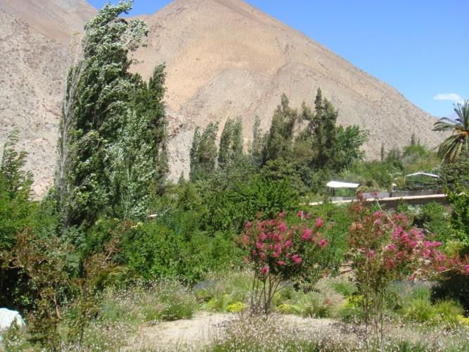 La Vall d'Elqui