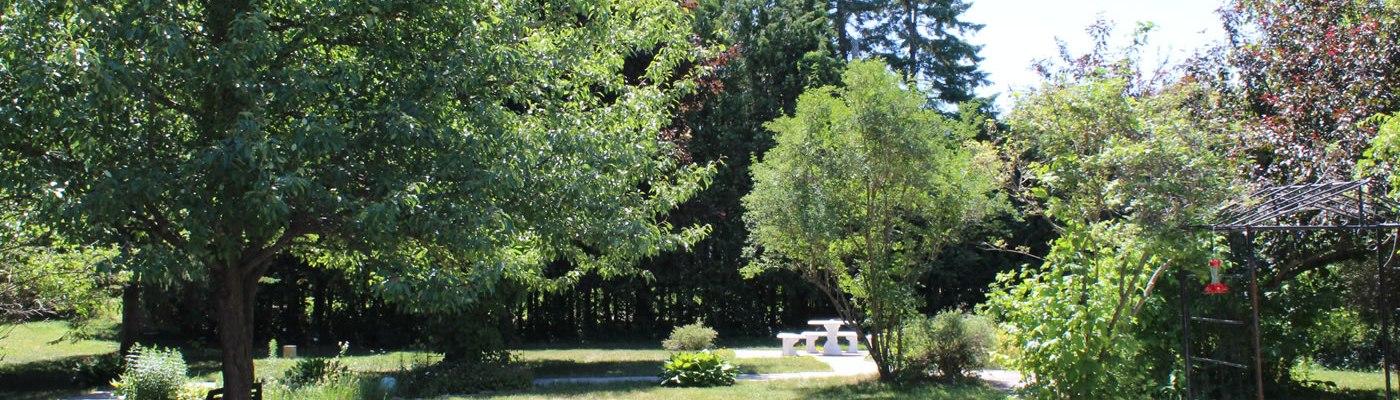 Seniors Residence Carleton Place - The Garden