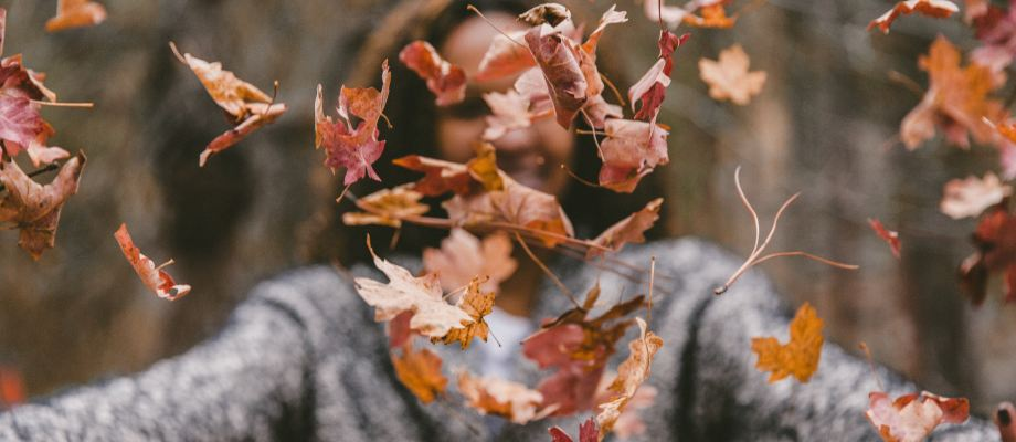 Autumn: A Lesson in Death and Hope