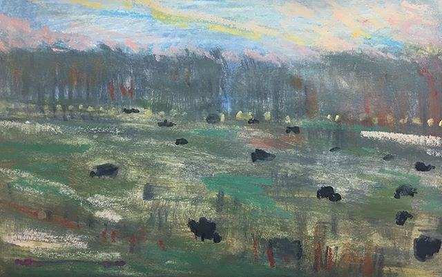 Cows in the Field on the Mississippi Prairie