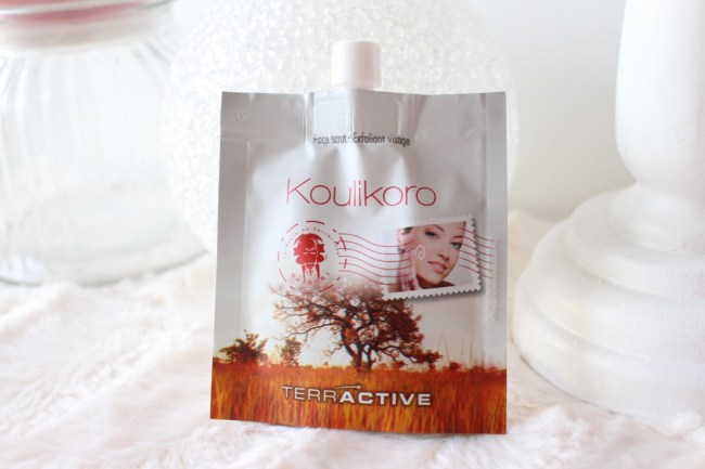 Koulikoro_terre_active