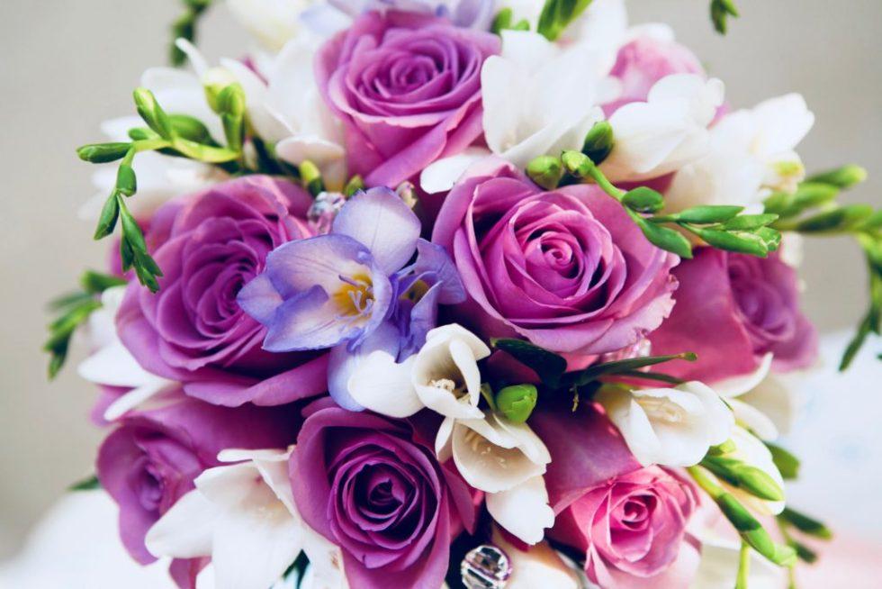 les fleurs et moi carline
