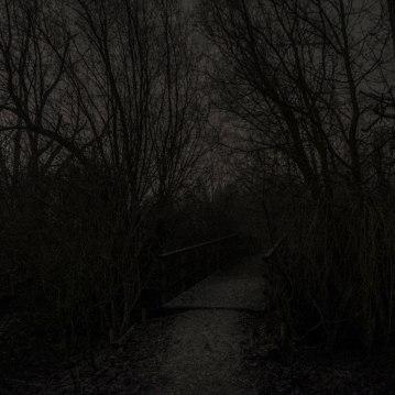 bissegem_nacht_mist-6913