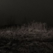 bissegem_nacht_mist-6944