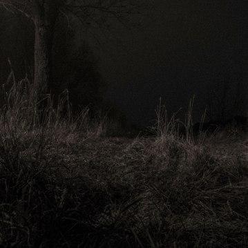 bissegem_nacht_mist-6949