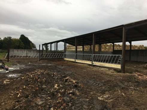 Galvanised Livestock Feed Barriers with wooden baseboards.
