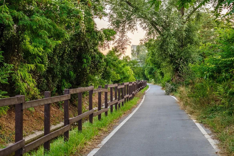 Radweg - gepflegt
