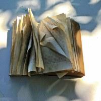 Sulla non-morte del romanzo