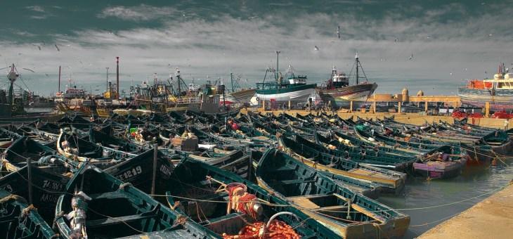 La contaminación y sobreexplotación de nuestros mares.