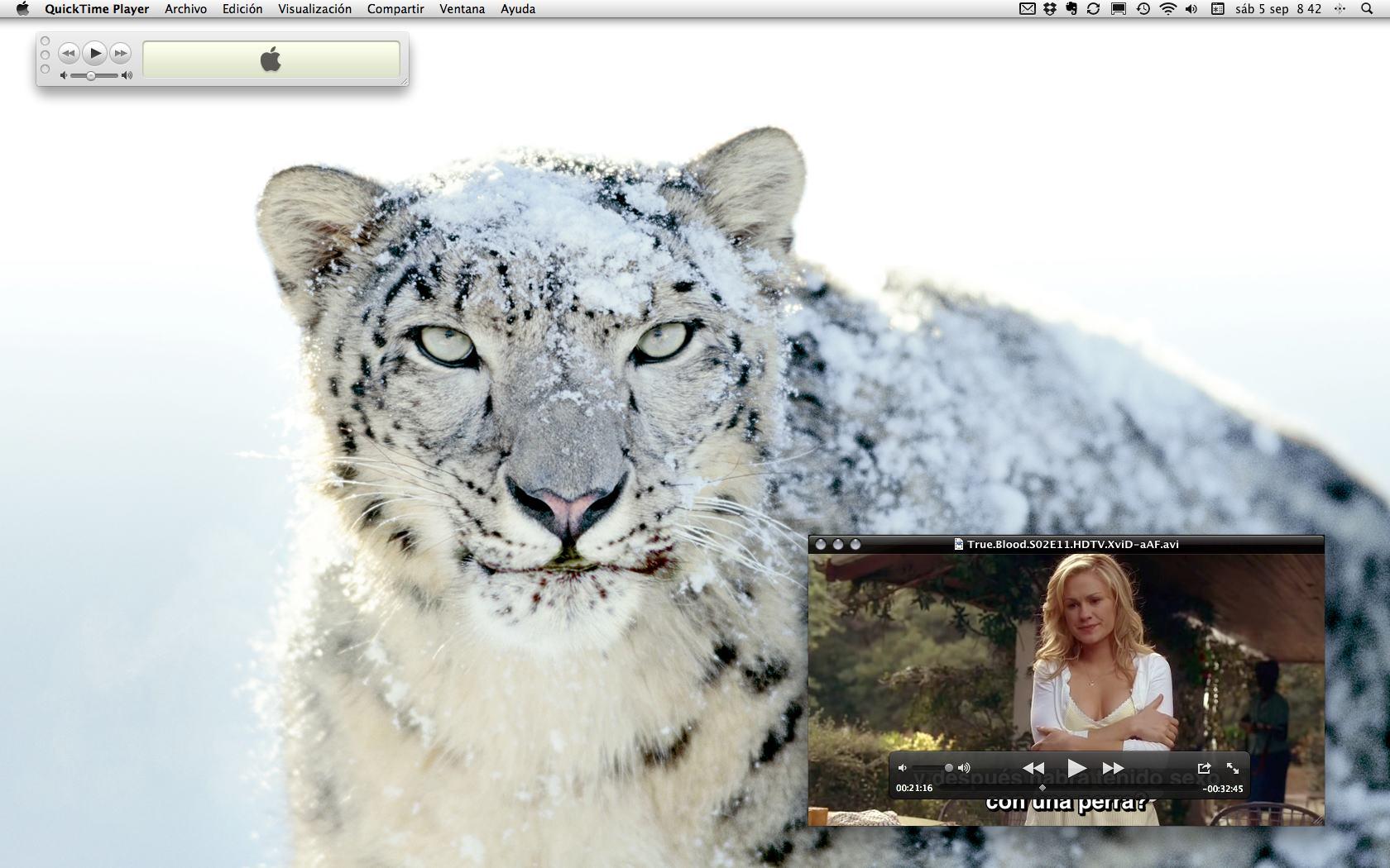 Captura de pantalla 2009-09-05 a las 08.42.56