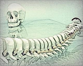 Opinar sobre la osteopatía