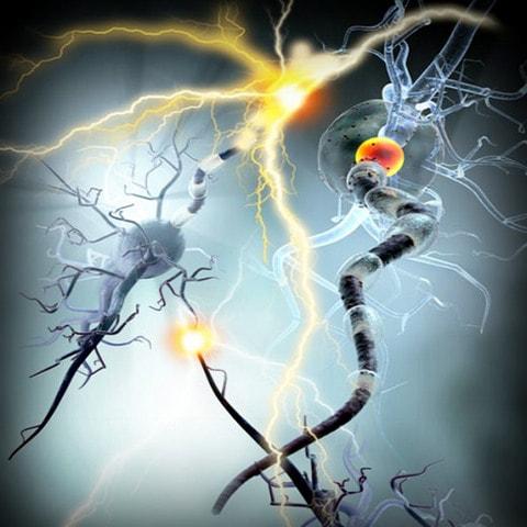 Neuroinflamación, dolor y trastornos psiquiátricos