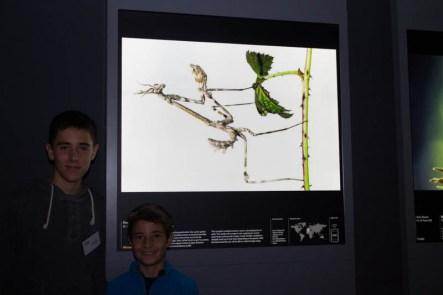Junto a la bonita foto de Marc Albiac, premio a la categoría de 10 a 14 años
