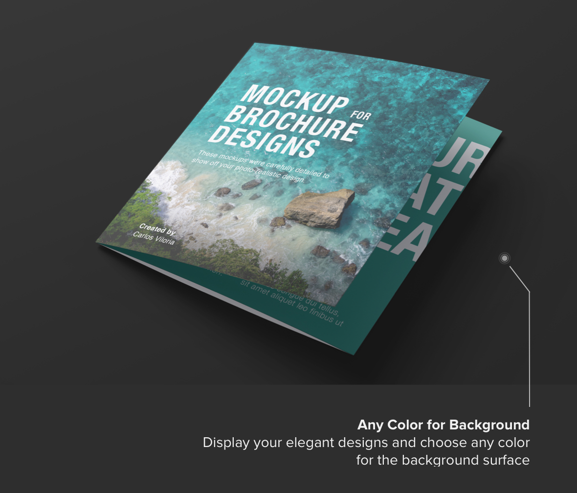 Square Trifold Brochure Cover Mockup -Background Color