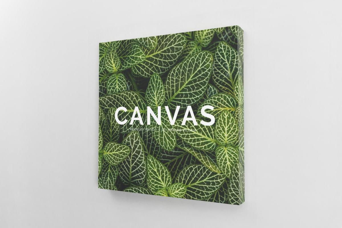 canvas mockups bundle - Square Canvas Ratio 1x1 Mockup 01