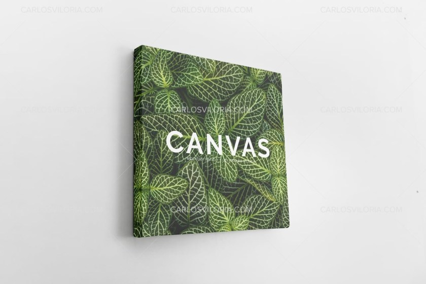 Photo Square Canvas Mockup