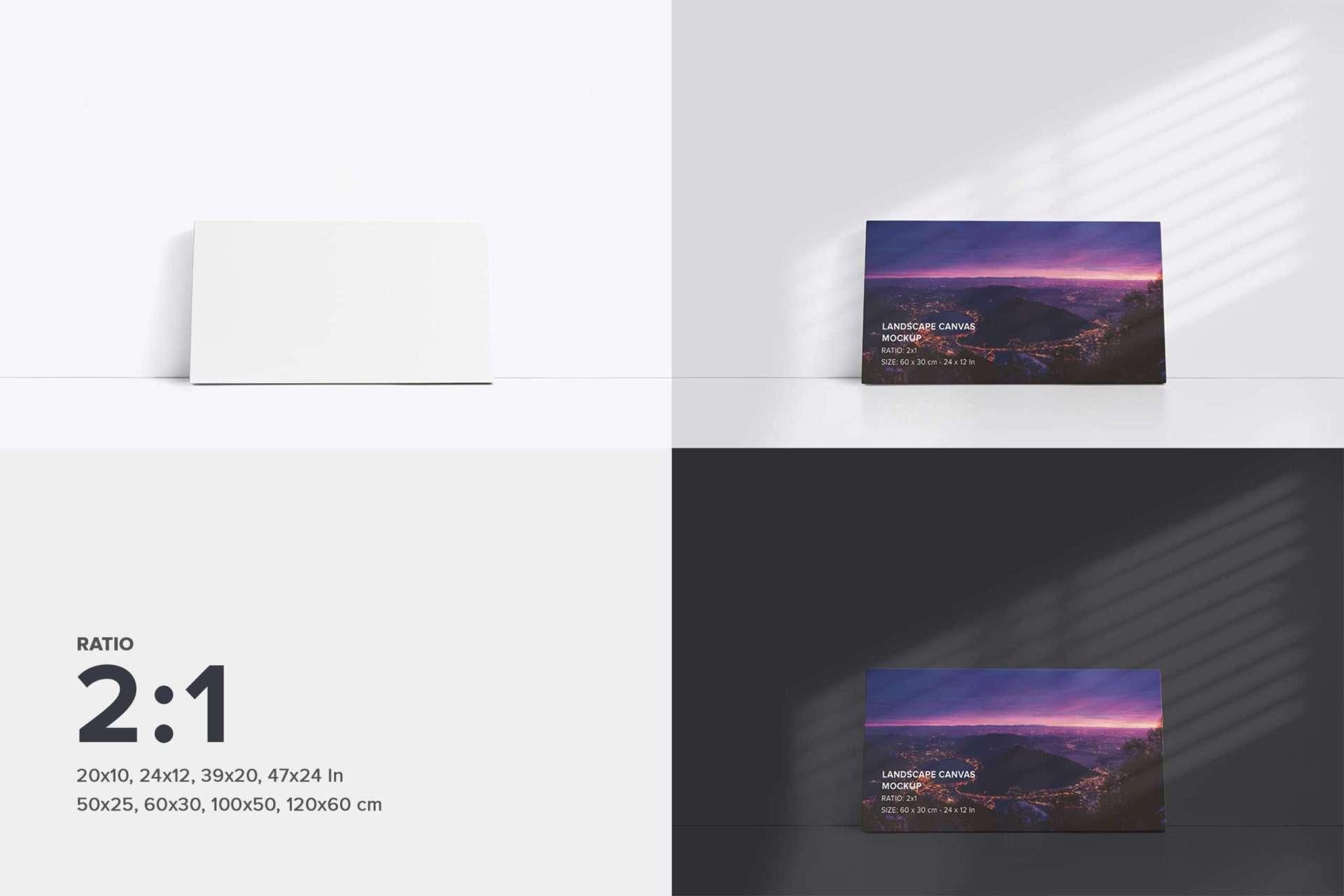 Front Facing Canvas Ratio 2x1 Mockup Bundle