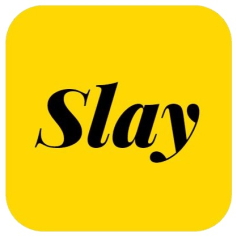 WaySlay app icon