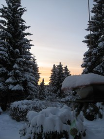 Harzer Schneepanorama