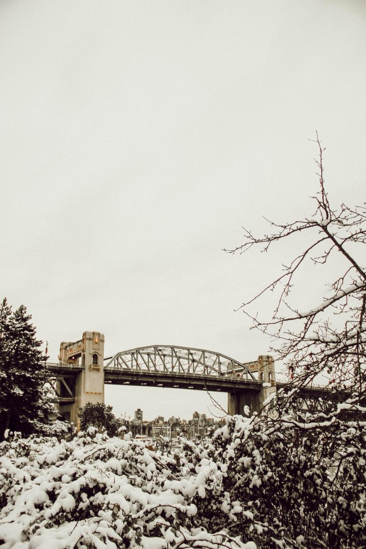 snowblog (9)