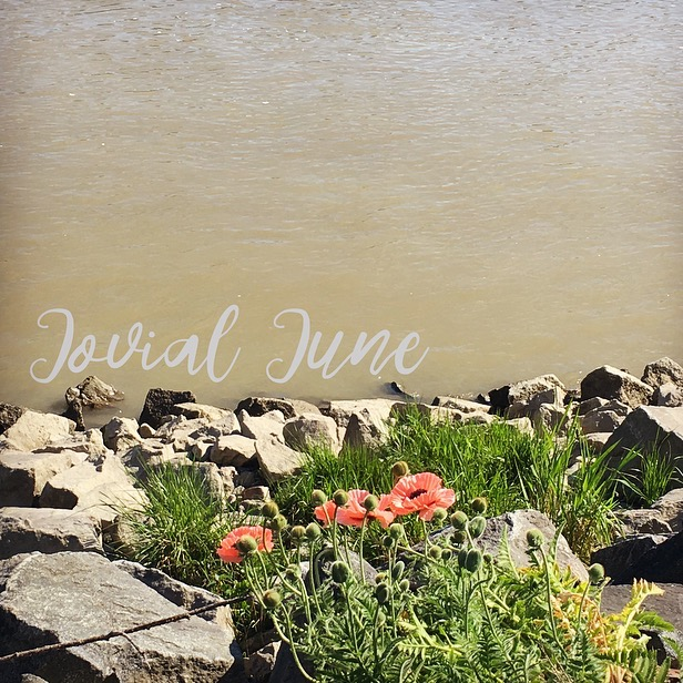 Things we'll do this month: June