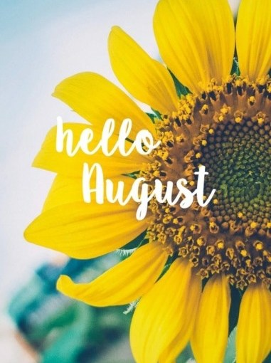 Things we'll do this month: August 2019