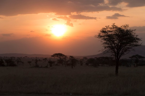 A typical African sunset