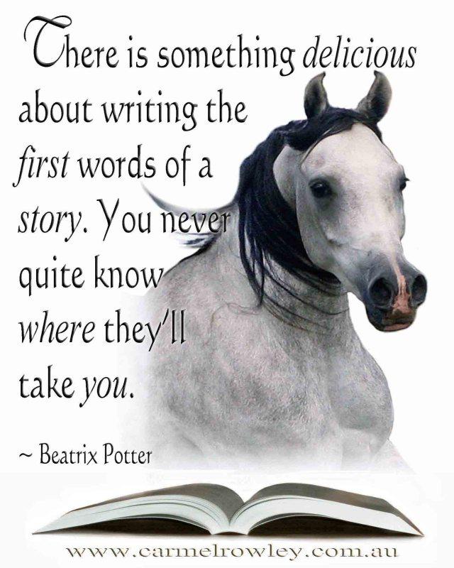 A dream role – write your story – carmelrowley.com.au