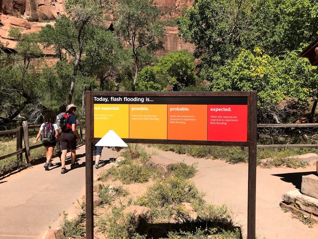 Mi aventura mojada por los Narrows del Parque Zion