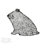 Squishy Bear