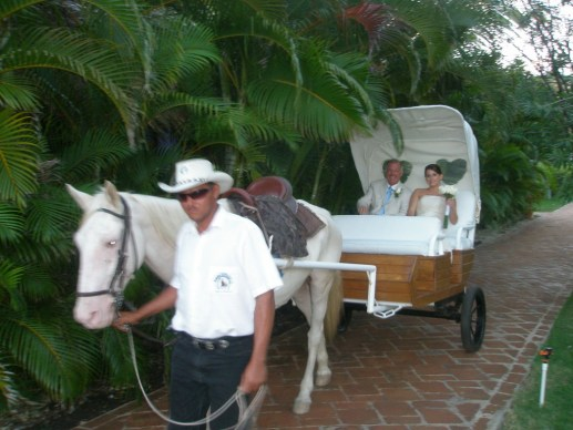Horse Drawn Carriage - Excellence Punta Cana