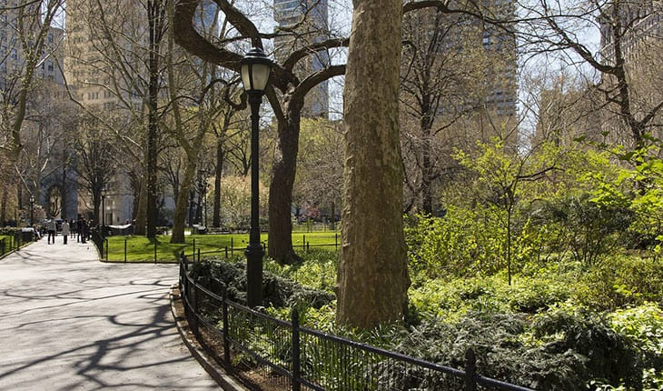 Top 5 Activities To Do With Your Kids This Summer in Manhattan