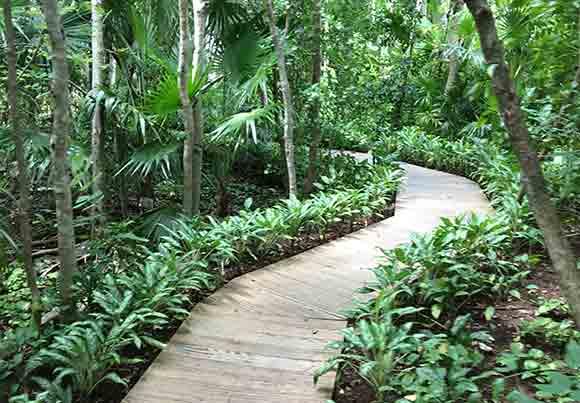 Sense Spa Rosewood Walkway
