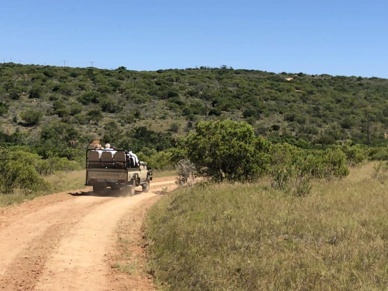 Kichaka Luxury Game Reserve